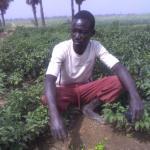 NASSEBEGOU Dadjoibe, maraîcher grace à AGRISEF
