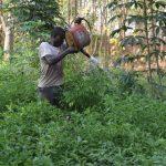 ''Le crédit AGRISEF a restauré la confiance que j'avais en moi de pouvoir me prendre en charge'', Kokou TONGUE, Bénéficiaire AGRISEF