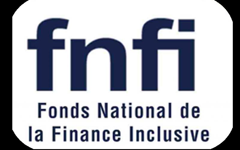 logo fnfi